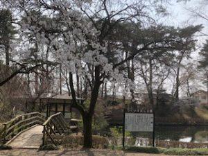 うぐいす谷公園